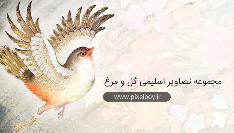 مجموعه تصاویر اسلمی گل و مرغ به صورت png